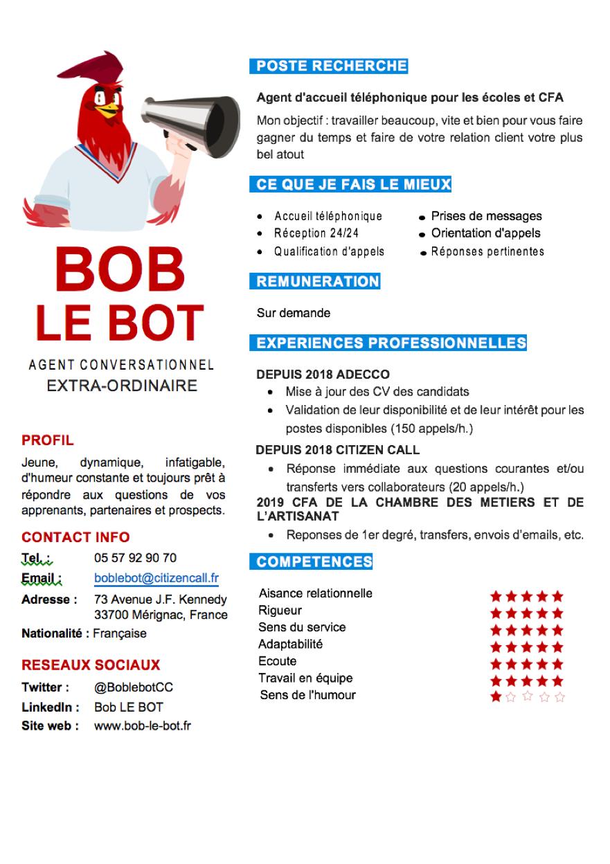 CV Bob le Bot